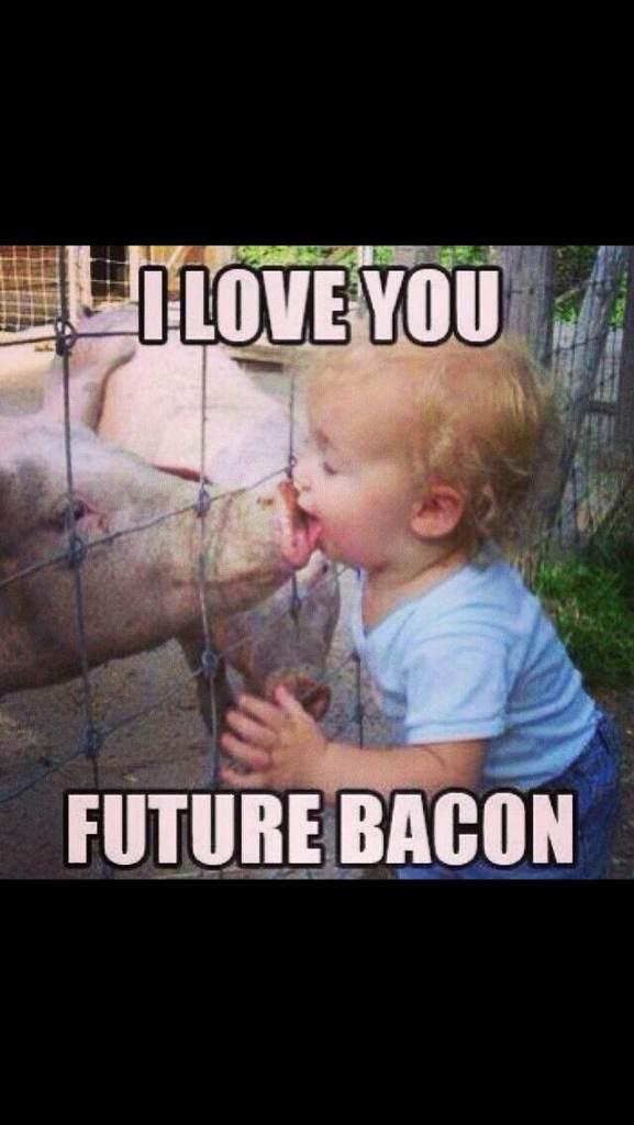 Future Bacon